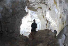 abbey caves Whangarei