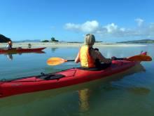 Kayaking at Whangarei Heads