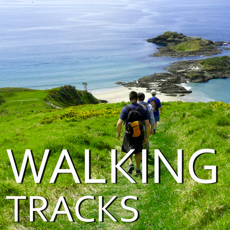 Walking tracks at Whangarei Heads