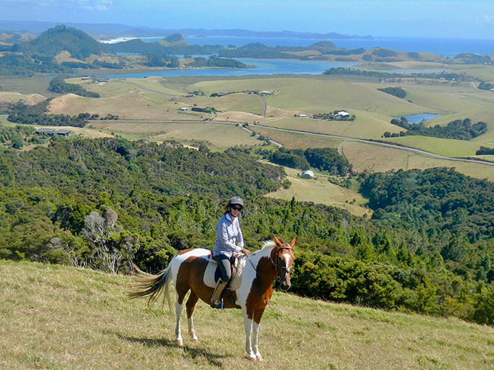 Coastal horse treks and beach rides