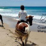 Coastal Riding Taiharuru